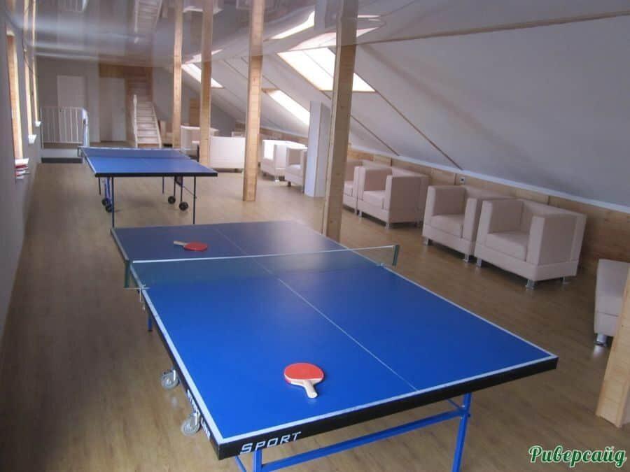 Настольный теннис, отдых на Дону, Волгоградская область